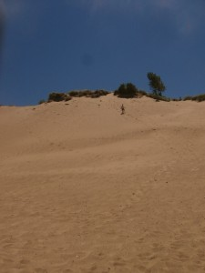 Race to the bottom at Warren Dunes State Park